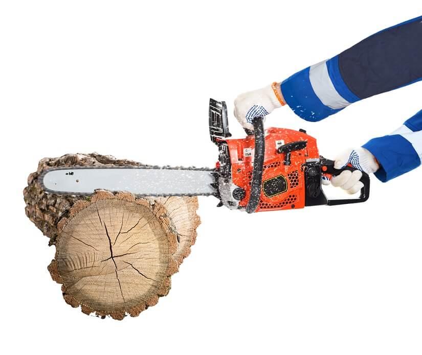 motosierra para madera